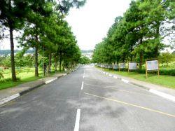 Jazido a venda no Cemitério Vale dos Pinheirais - Mauá SP Brasil R$ 10.000,00 - Anunciante Toninho 00 55 (11) 99513 4010 / 11 4513 1768